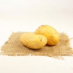 Pomme de terre blanche - 1KG